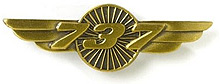 Значок Boeing 737 Wings Pin