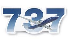 Boeing 737 Sky Magnet